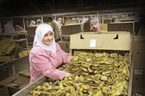 İHRACATÇILAR - Ege'den Yapılan Tarım Ürünleri İhracatı 4 Milyar Doları Aştı