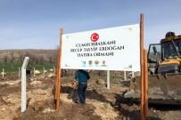 DİYARBAKIR VALİLİĞİ - Hani'de Cumhurbaşkanı Erdoğan Adına Hatıra Ormanı Oluşturuluyor