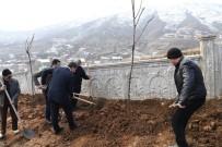 KAR YAĞıŞı - Muş'ta Mezarlık Çevresinde Yeşillendirme Çalışması