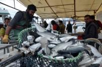 Balıkçılar Havuz Balığına Yöneldi