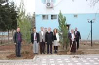 ÇEVRE YOLLARI - Başkan Yazıcı'dan Daha Yeşil Bir Hani İçin Kampanya