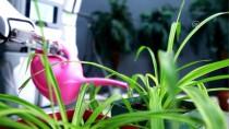 OYUN HAVASI - Yerli İnsansı Robotlar 'Oyun Havası'na Girdi