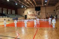 ÖMER CAN - Çanakkale'de Taekwondocular Ter Döktü