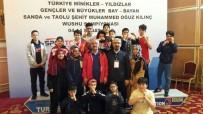 AHMET ÇAKıR - Malatyalı Sporcular Wushu Şampiyonasından Dereceyle Döndü