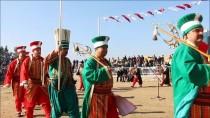 DEVE GÜREŞİ - Nazilli Deve Güreşi Festivali Yapıldı