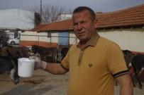 VARSAK - Turizm Sektörünü Bıraktı, Eşek Sütü Üretimine Başladı