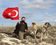 HÜSEYIN YıLDıZ - Kangal Köpekleri Zeytin Dalı Harekatına Hazır