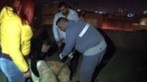 HAYVAN HAKLARı - Köpeklerini Kemerle Döven Şahıs Gözaltına Alındı