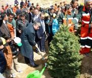 BÜYÜKŞEHİR YASASI - Başkan Akyürek Açıklaması 'Yeşil İçinde Konya' İçin Çalışıyoruz'