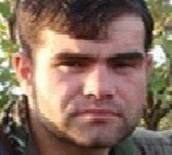 DİYARBAKIR EMNİYET MÜDÜRLÜĞÜ - Mavi Listedeki Sözde Bölge Yöneticisi Terörist Öldürüldü