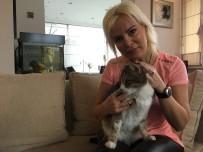 ÖMÜR GEDİK - (Özel) 'Kuyu' Köpek Kurtarılmasından Bir Sene Sonra Görüntülendi