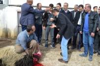 ARİF KARAMAN - Adilcevaz Afrin Gazisini Bağrına Bastı
