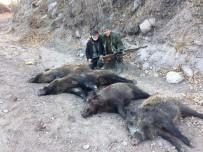 TARıM - Karaman'da Yaban Domuzu Sürek Avı Düzenlendi