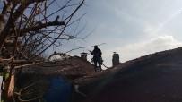 YANGINA MÜDAHALE - Tosya'da Yangın, Paniğe Neden Oldu