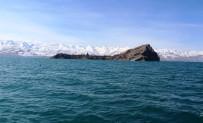 AKDAMAR ADASı - Akdamar Adası Tatlı Suya Kavuşuyor