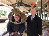 DENİZ CANLILARI - Dr. Halil İbrahim Özkuş Açıklaması 'Balıkçı Kenan Türkiye Deniz Canlıları Müzesi'ni Üniversal Hale Getirmeliyiz'