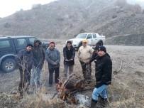 ORMAN VE SU İŞLERİ BAKANLIĞI - Erzincan'da Sürek Avı Düzenlendi