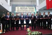 TÜRKIYE ZIRAAT ODALARı BIRLIĞI - 13. Mersin Tarım, Gıda Ve Hayvancılık Fuarı Açıldı