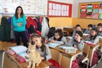İZMIR İL MILLI EĞITIM MÜDÜRÜ - Veli Şikayetiyle Uzaklaştırılan Kedi Tombi Yeniden Okula Döndü