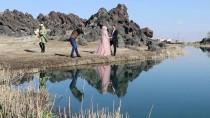 NAHÇıVAN - Ağrı Dağı Milli Parkı Doğal Stüdyo Oldu