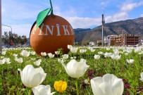 TURUNÇOVA - Finike Sokakları Çiçek Bahçesine Döndü