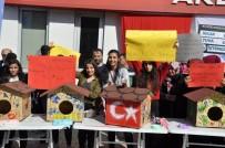 MUSTAFA ÖZER - Öğrencilerden Sokak Kedileri İçin 'Pati Kondu'