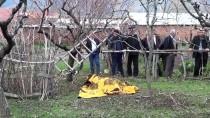 HASAN YıLDıZ - Tokat'ta Budamak İstediği Ağaçtan Düşen Kişi Öldü