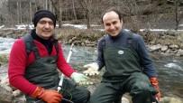MUSTAFA AKKUŞ - Yrd. Doç. Dr. Mustafa Akkuş; 'Akarsulara Kaçan Çiftlik Alabalıkları Doğal Türleri Tehdit Ediyor'