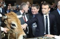 SEMPATIK - Macron'un Tarım Fuarında İlginç Anları