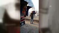 KAMYON ŞOFÖRÜ - Koyun Taşınan Kamyonda 151 Kaçak Göçmen