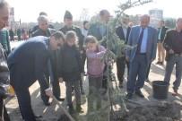 Kaymakamı Girgin, Anaokulu Öğrencileri İle Ağaç Dikimi Kampanyasına Katıldı