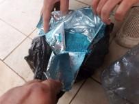 TARIM İLACI - 'Nargile' İle Deniz Patlıcanı, Kimyasal İle Ahtapot Avlamışlar