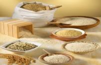 ALZHEIMER - Pirinç Yaşlılığı Yavaşlatıyor