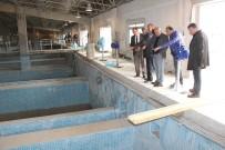 ELEKTRİK TÜKETİMİ - Karaman'da Arıtma Tesisinde Havuzlara Test Amaçlı Su Verilmeye Başlandı