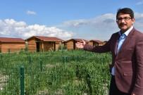 İSTİMLAK - Şehzadeler'in 'Hobi Bahçeleri'ne Başvurular Başlıyor