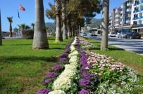 KONAKLı - Alanya Çiçeklerle Renklendi