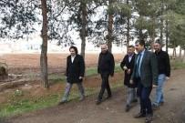 BUZ PATENİ - Başkan Asya, 'Göletli Park' Projesinin Uygulanacağı Alanı İnceledi
