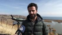 MILLI PARKLAR GENEL MÜDÜRLÜĞÜ - Bitlis'in Kanatlı Misafirleri Kayıt Altına Alınıyor