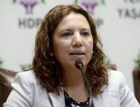 DEMOKRATIK TOPLUM KONGRESI - HDP'li Irmak'a verilen hapis cezası onandı