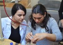 Milas'ta Özel Bireylere 'Gümüş Takı Yapımı Ve Kuyumculuk' Eğitimi