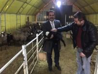 TANDOĞAN - VANTB Başkan Adayı Tandoğan'ın İlçe Ziyaretleri
