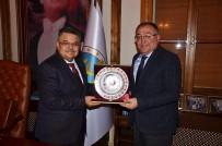 VEFA SALMAN - Yalova Belediye Başkanı Salman'dan Başkan Yağcı'ya Ziyaret