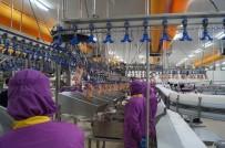 BÜYÜME ORANI - Bursa Ekonomisi 2018'E Hızlı Başladı