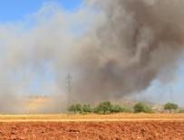 SAVAŞ UÇAĞI - İdlib'de savaş uçağı düşürüldü