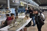 MERINOS - Kuş Tutkunları Bursa'da Buluşuyor