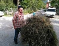 ORMAN İŞÇİSİ - Orman İşçilerini Taşıyan Kamyon Devrildi Açıklaması 2 Ölü, 12 Yaralı