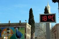 HAYVANAT BAHÇESİ - Samsun'da Termometreler 18 Dereceyi Gösterdi