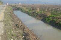 DERE YATAĞI - Muradiye'deki Dere Temizliği Tamamlandı