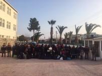 ŞÜPHELİ ARAÇ - Jandarma, 160 Kaçak Göçmeni Yakaladı