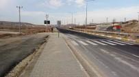 Mardin'de Araçların Çarptığı 2 İnek Ve 1 Köpek Telef Oldu